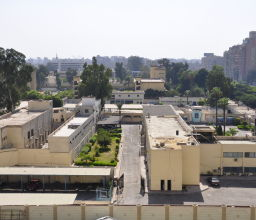 Cairo II